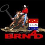 BRN4D logo