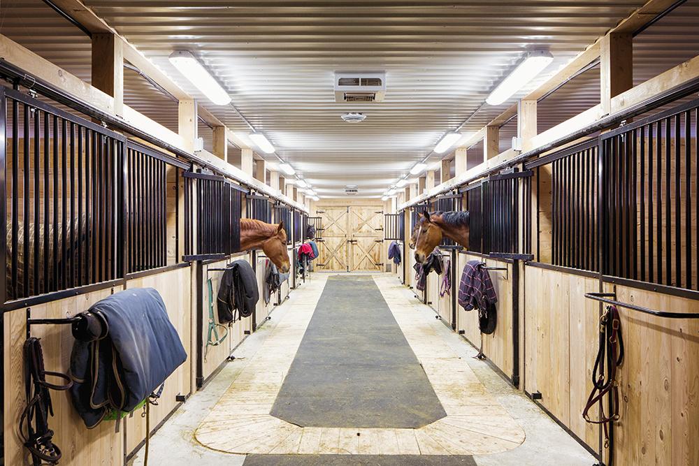 2015 Barn, Arena and Farm Equipment Guide - Barrel Horse News