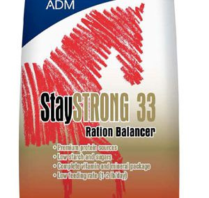 Guide01 ADMAllianceStaySTRONG