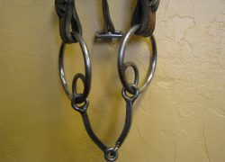 square mouthpiece o-ring snaffle