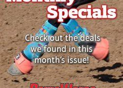 monthlyspecials2 250