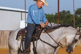 Ron Ralls turning horse