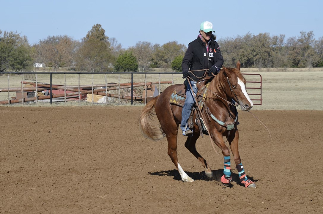 Jolene Montgomery getting horse to step over ba