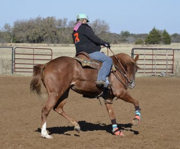 Jolene Montgomery riding a colt and working on training the barrel pattern