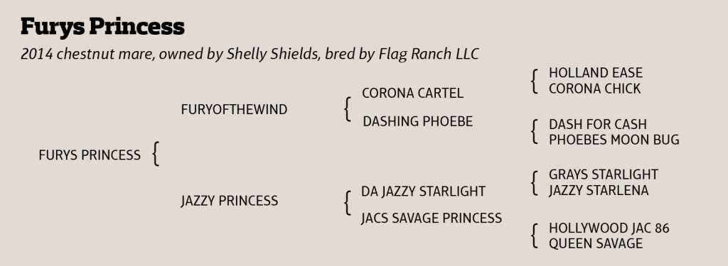 Furys Princess pedigree