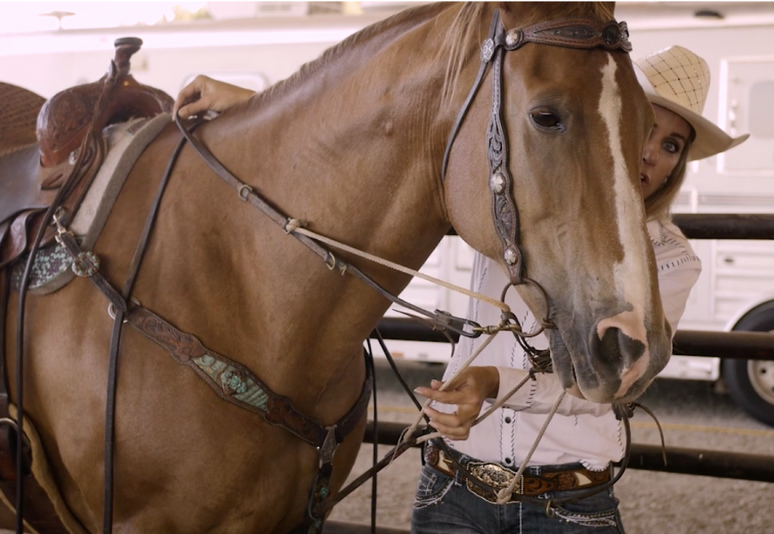 Martingales and Draw Reins