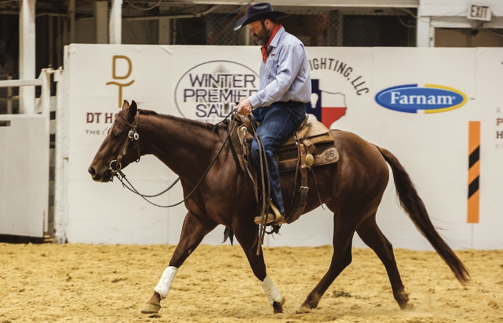 Blue Allen trotting across arena on horse during softening drill