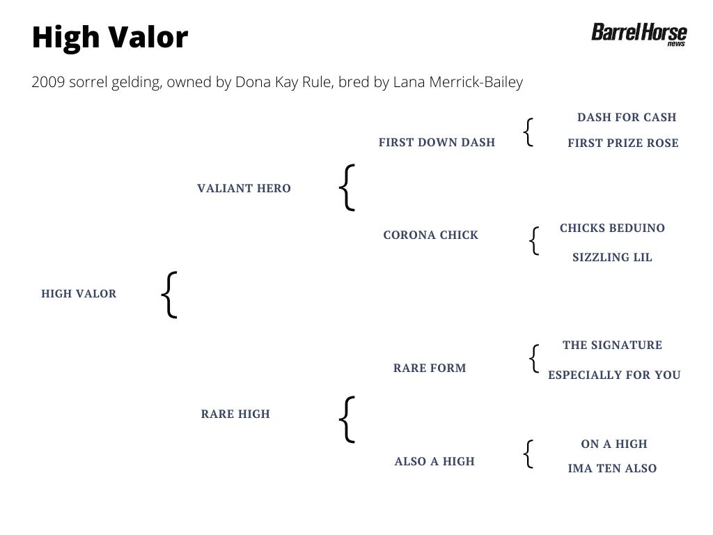High Valor pedigree