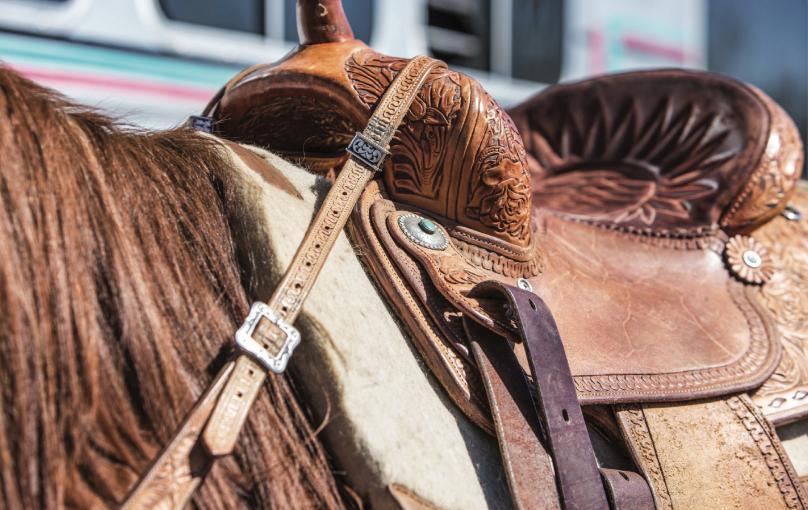 Dona Kay Rule's saddle