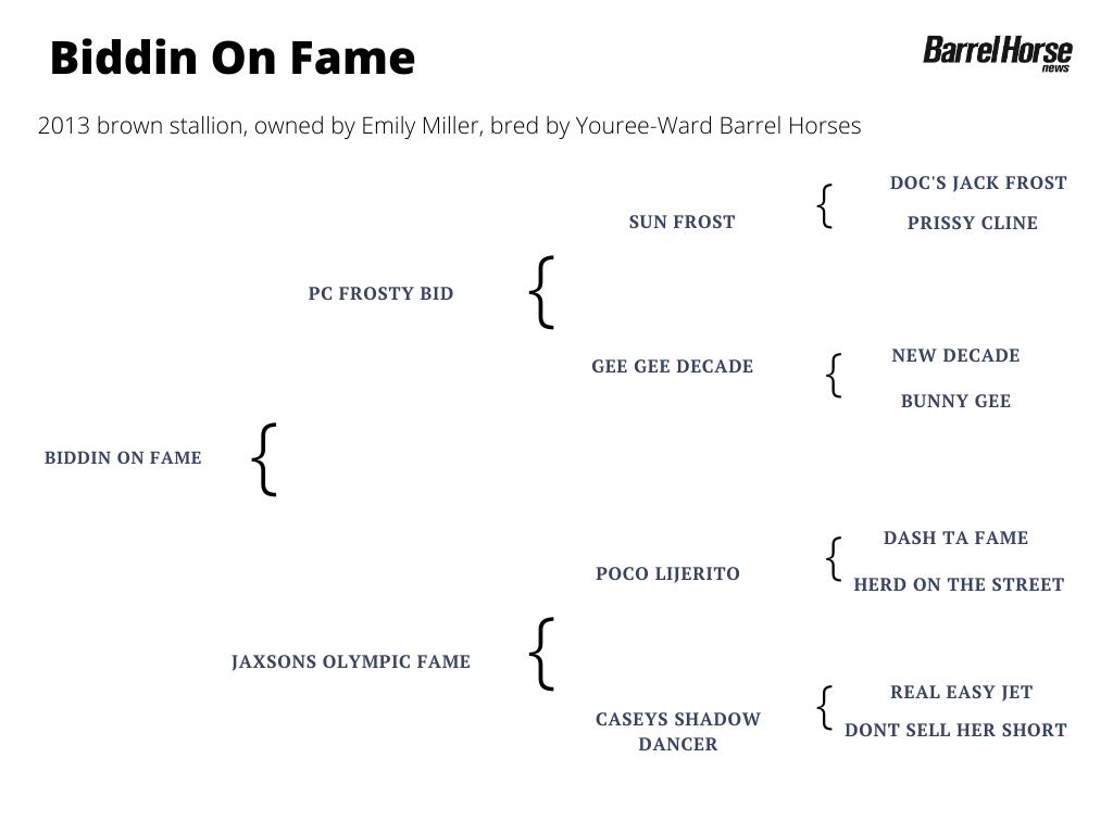 Biddin On Fame pedigree