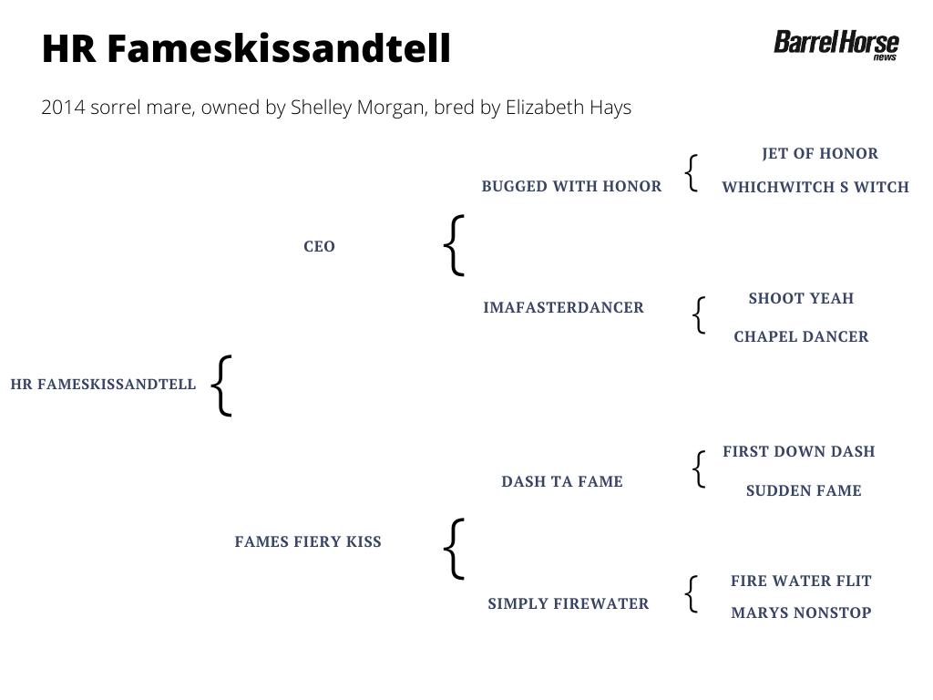 HR Fameskissandtell pedigree