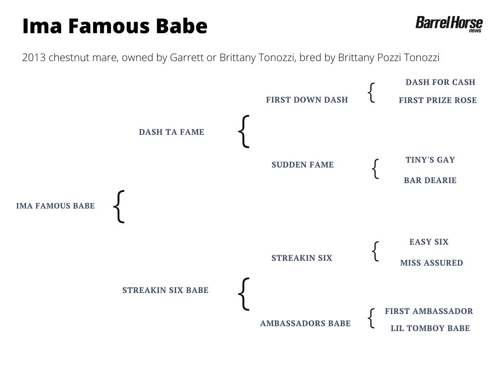 Ima Famous Babe pedigree