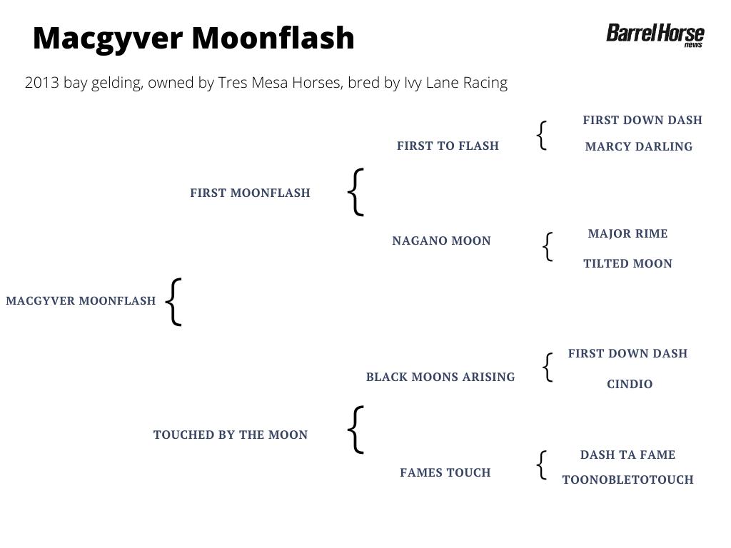 Macgyver Moonflash pedigree