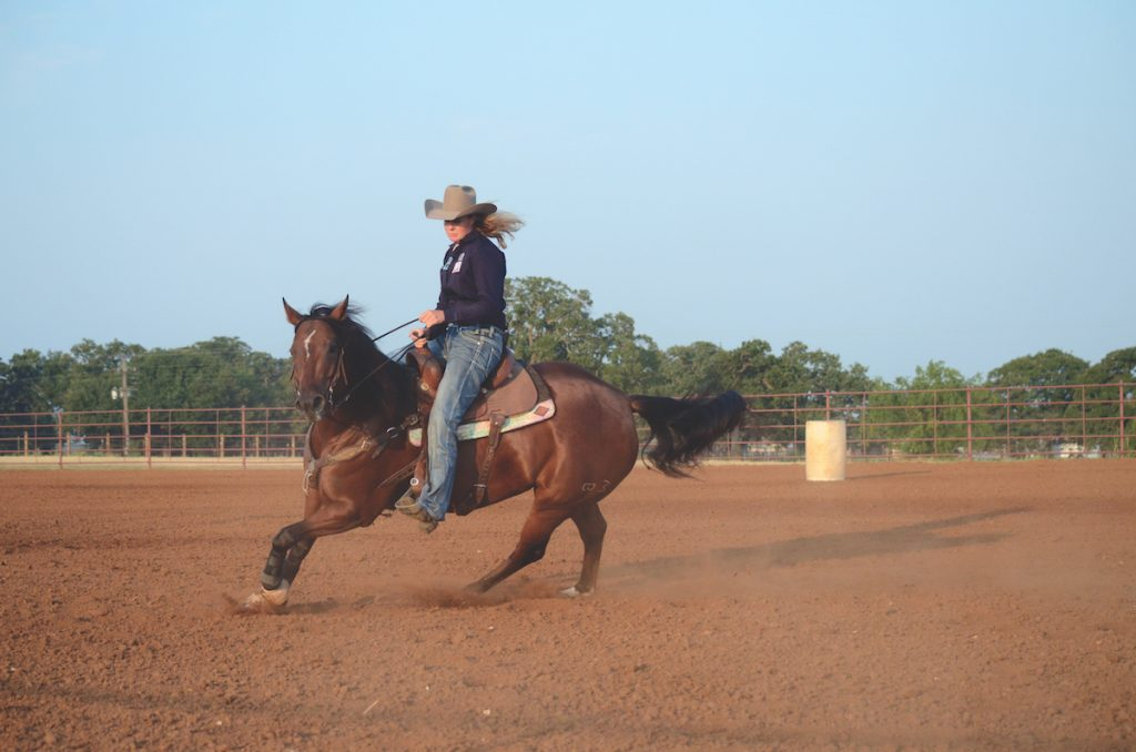 Loping a young barrel horse prospect.