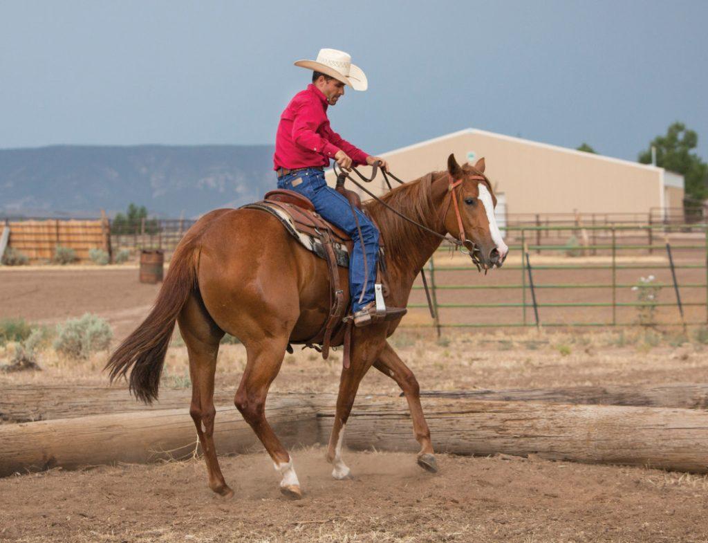 Weaver helping the horse through a turn.