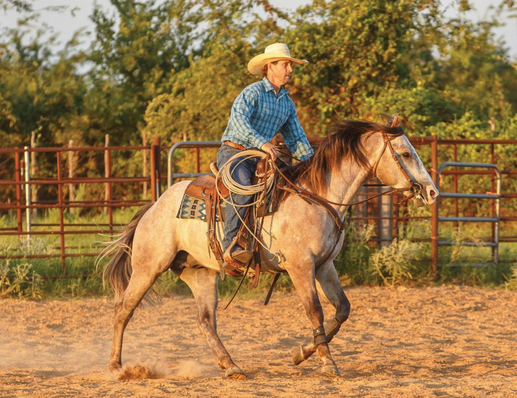 Colt starters using loping circles to help young horses gain control of their bodies under saddle.