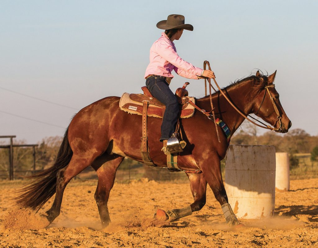 Add speed once your horse has mastered the drill.