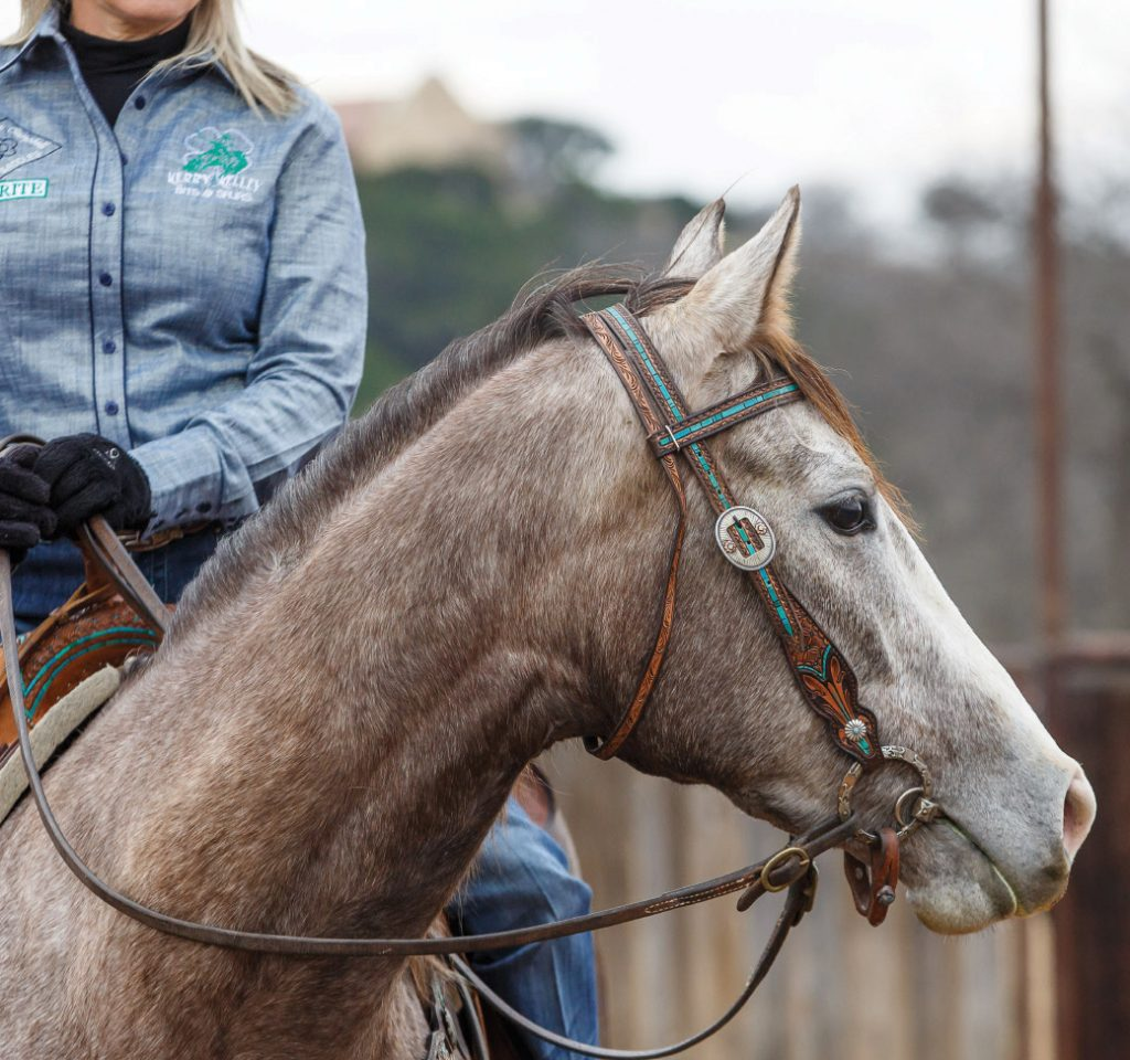 Using an O-ring snaffle and split reins helps Danyelle Campbell set her hands and work on maintaining her horse's frame.