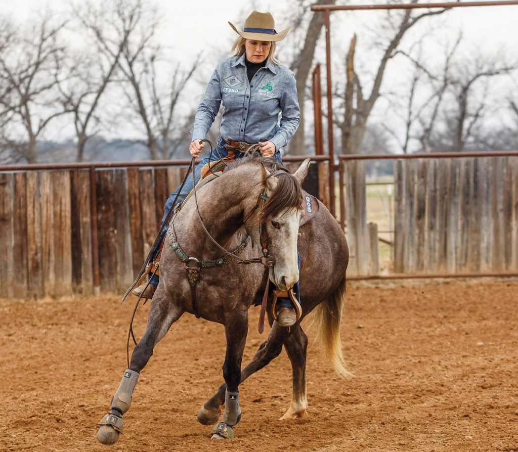 Once your horse has mastered the exercise at a walk ask them to maintain their frame at a trot.