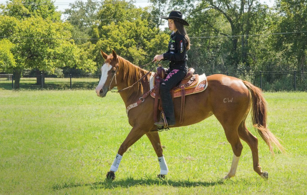 After a long process in overcoming injury Ana Laura Savini is able to ride again.